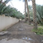 Road in Farq