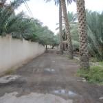 Road in Farq